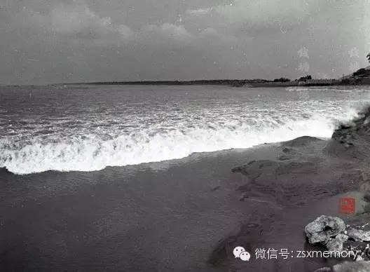 八十年代初,杭州堡坝里观潮。