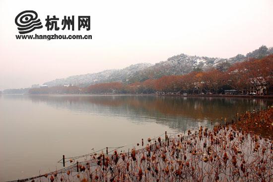 半湖红叶半湖水