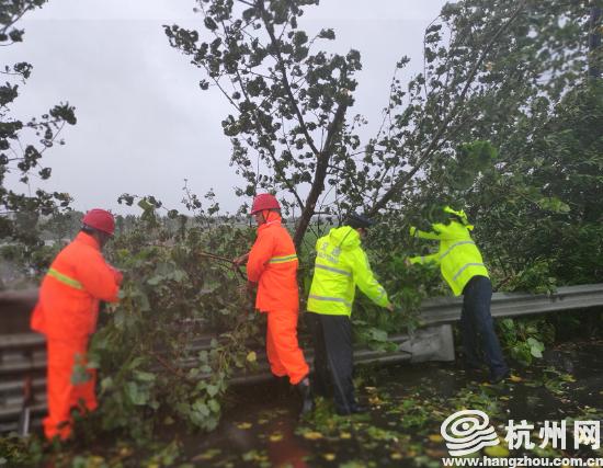 """台风""""利奇马""""影响 杭州公路通行情..."""