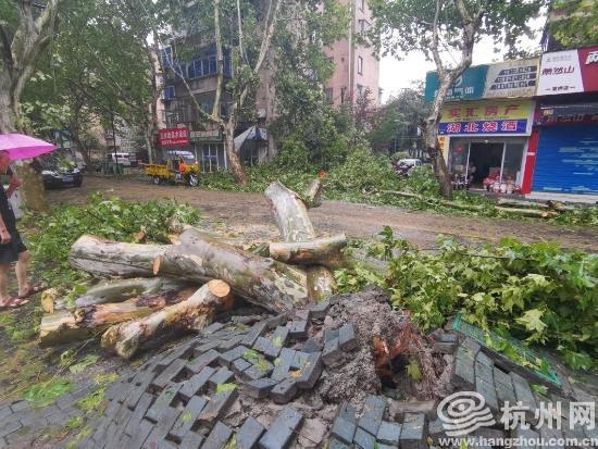 """抗击超强台风""""利奇马"""" 杭州正在行..."""