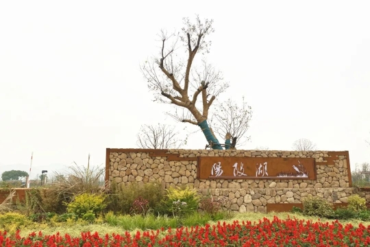 扬尘变少了、十年九涝的湖成了湿地公园……快来细数美丽杭州的建设成效