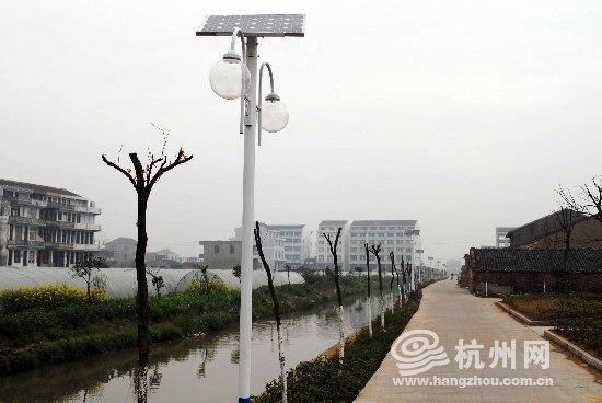 浙江温岭:太阳能路灯点亮村庄 倡导节能方便村民图片